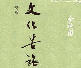 《文化苦旅》读后感600字【精选】