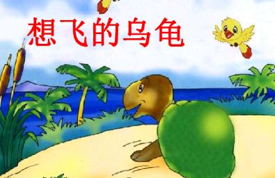 《想飞的乌龟》读后感