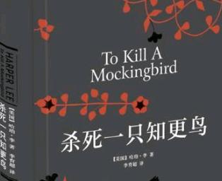 《杀死一只知更鸟》读后感【最新】