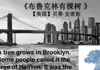 《布鲁克林有棵树》读后感【中学】