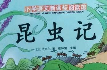 《昆虫记》读后感【五年级二班】