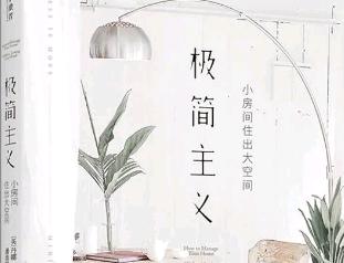 《极简主义》读后感【大学生】