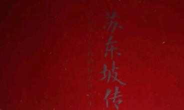 《苏东坡传》读后感【很优秀】