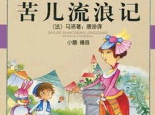 《苦儿流浪记》读后感【小学生5篇】