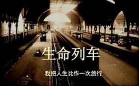 《生命列车》读后感1000字