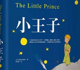 《小王子》读后感【14篇】