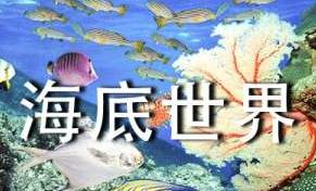 《海底世界》读后感