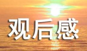忠犬八公观后感通用【15篇】