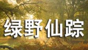 《绿野仙踪》读后感【集合15篇】