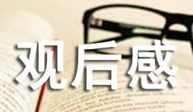 杂技观后感作文集锦【5篇】