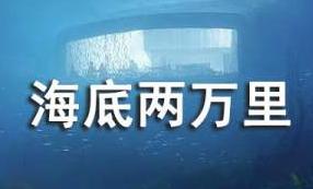 《海底两万里》读书笔记【通用15篇】