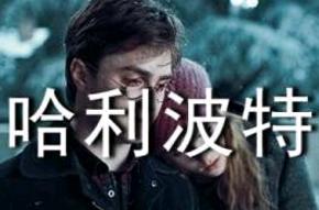 《哈利波特》读后感精选[15篇]