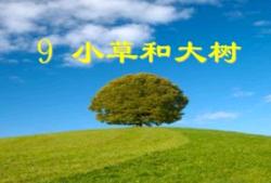 《小草和大树》读后感15篇