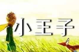 《小王子》读后感(汇编15篇)