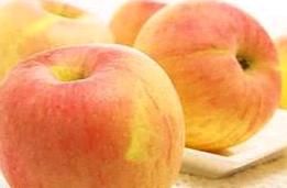 苹果树上的外婆读后感【推荐】