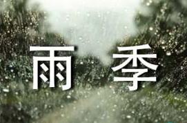 《花季雨季》观后感【5篇】